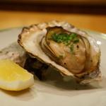 48101542 - 諫早湾の牡蠣