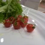 Dining TABI - マイクロトマトは可愛いアクセントだ~