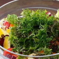 鎌倉野菜のたっぷりサラダ