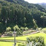 キッチンハート - ウッドデッキからの景色です。葛城山系麓の棚田が目の前に広がって春夏秋冬違う景色を楽しめます。