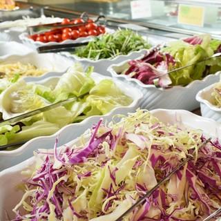 [新鮮野菜のサラダバー]農家直送、採れたて野菜です!