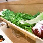 4849862 - 山盛り野菜