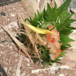 徳島魚一番 新 - ハゲ