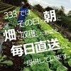 関内バル 333 - その他写真: