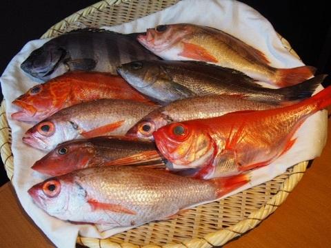 接待個室の海鮮和食日本料理屋 島の恵みと喰らえ 匠 大門浜松町店