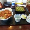 そば処いな垣 - 料理写真:ヒレソース+茶蕎麦のセット。