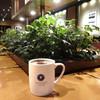 エクセルシオールカフェ - ドリンク写真:ちょっと寂しくなりました