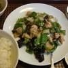 四川料理 天禄園 - 料理写真:鶏の黒こしょう炒め