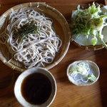 そば処 みちこ - 山芋つなぎざるそば・山菜天ぷら付き(800円)_2010-08-28