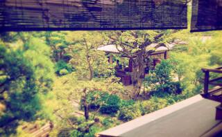 東京 芝 とうふ屋うかい - 個室からの眺め