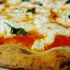 ステッサ - 料理写真:リコッタチーズ