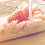 49788414 - 特選 白イチゴ~初恋の香り~のタルト