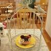 ことりカフェ - 料理写真: