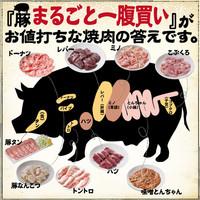 ◆最高なホルモンの方程式は、【精肉卸直営×牛まるごと一頭買い×豚まるごと一腹買い】でした!◆