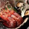 魚と酒 はなたれ - 料理写真:全国各地旬魚満載です!
