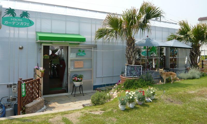 トロピカル ガーデンカフェ