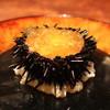 幸村 - 料理写真:北海道産 紫雲丹の伊勢海老の煮凝り寄せ