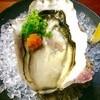 和ダイニングsize1/3 - 料理写真:岩牡蠣