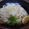 國安うどん - 料理写真:きじょうゆうどん(温) 400円