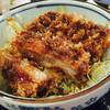レストラン ひだ小僧 - 料理写真:ミニソースカツ丼@550