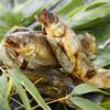 光石 - 料理写真:夏の風物詩鮎。長良川産のものを炭で時間を掛けじっくり焼き上げます。頭からどうぞ。