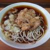 わんぱく - 料理写真:かけそば(350円)+ゲソ天(100円)