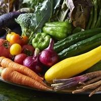 天敵農法の高知野菜は新鮮で美味しい
