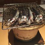 瀬戸内鮮魚料理店 - 料理写真: