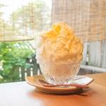祇園NITI - 季節のかき氷「杏子のタルト」