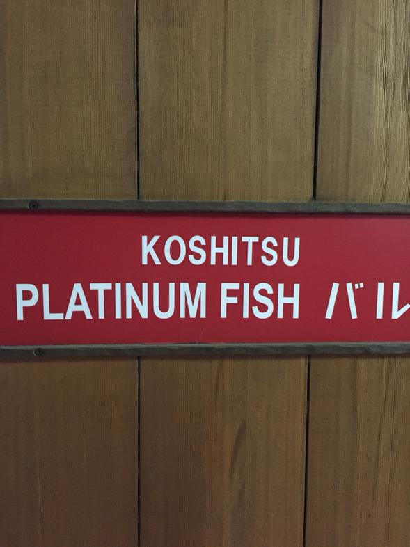 KOSHITSU 白金魚 バル