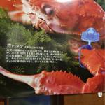 おけしょう鮮魚の海中苑 - その他写真: