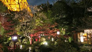 東京 芝 とうふ屋うかい - 鳥居と池がある'うかい'のお庭