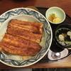 神田きくかわ - 料理写真:特選丼