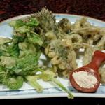 貴州屋 - 山菜の天ぷら