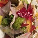 51230807 - 10種類の野菜と蒸し鶏の彩サラダ