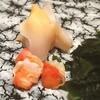 すし屋 小桜 - 料理写真:赤西貝とみる貝
