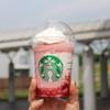 スターバックス コーヒー - ドリンク写真:ストロベリー ディライト フラペチーノ☆