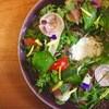 Lanka - 料理写真:色々野菜とハーブのサラダ