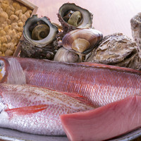 確かな目利きで毎日長浜市場から仕入れる、新鮮な魚介類