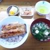 源八 - 料理写真:うな丼1/2尾¥1400