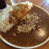 ザ ガードカレー - 料理写真:牛スジカレー700円ライス大盛り