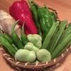 天正 - 料理写真:夏野菜で暑さ対策!