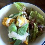 日野水牧場 ファームハウス - サラダもこちらで採れた野菜で♪