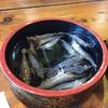 漁師料理 漁火 - 料理写真: