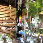グッデイズベーカリー - お店が入っているGoodays Department内観:植物