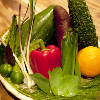 島の野菜、内地の野菜ともに信頼できる農家さんです。