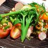 キッチン CACCIATORA - 料理写真:イクラや魚介類と野菜たっぷりの前菜。