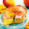 焼きたてチーズタルト専門店PABLO - 料理写真:9月中旬まで期間限定『焼きたてマンゴーチーズタルト』を販売します。 ※数量限定