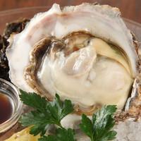 毎日新鮮な牡蠣をご提供!産地の食べ比べもあります♪
