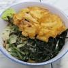 大和屋 - 料理写真:冷やし山菜そば420円+げそかき揚げ120円